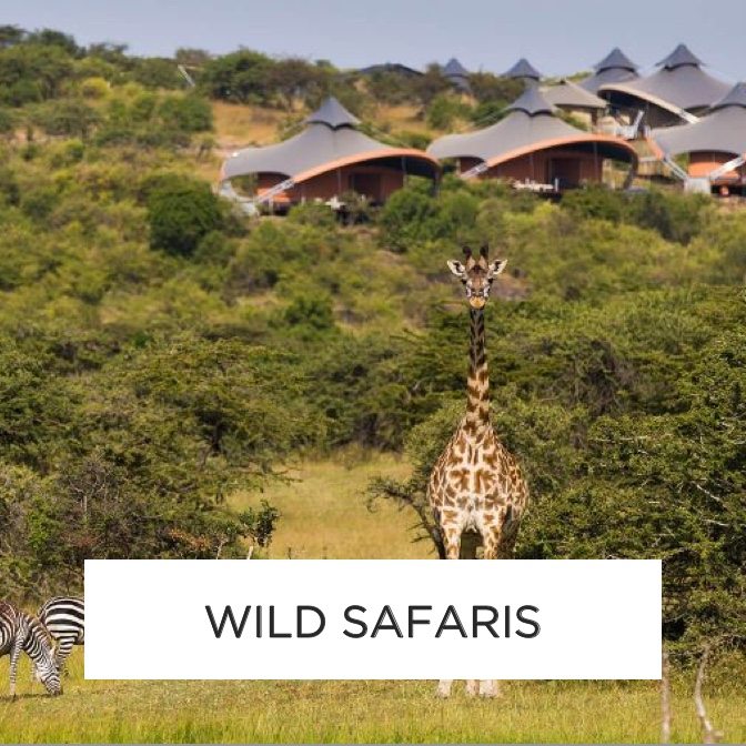 Luxury Safari Holidays and Hotels