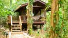 Pico Bonito Treehouse