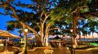 Banyan Courtyard at Sunset