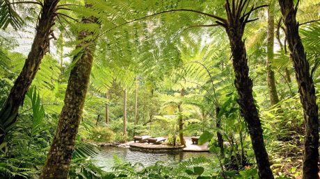 COMO Shambhala Estate - Ubud, Indonesia