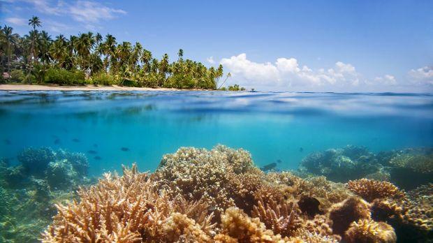 Jean-Michel Cousteau Fiji Islands Resort — Savusavu, Fiji
