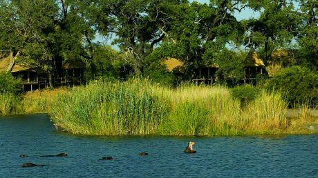 Kings Pool Camp - Linyanti Wildlife Reserve, Botswana