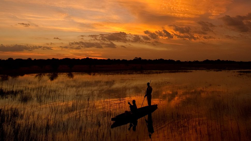 Sanctuary Chief's Camp — Moremi Wildlife Reserve, Botswana
