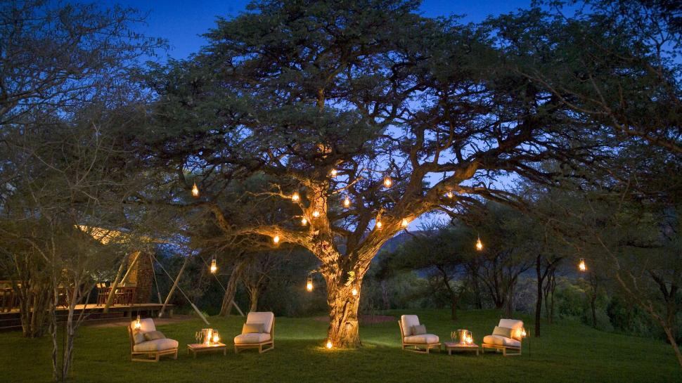 Marataba Safari Company Limpopo South Africa