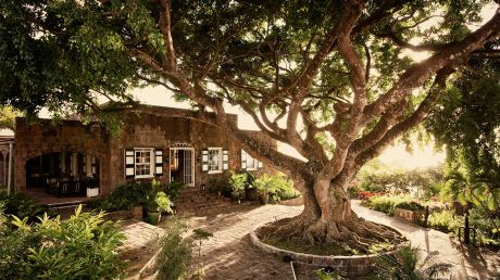 Montpelier Plantation and Beach - Pond Hill, St Kitts and Nevis