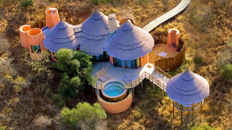 Thanda Private Game Reserve - Thanda Private Game Reserve, South Africa