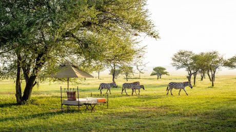 Singita Grumeti Reserves, Sabora Tented Camp - Grumeti  Reserves, Tanzania