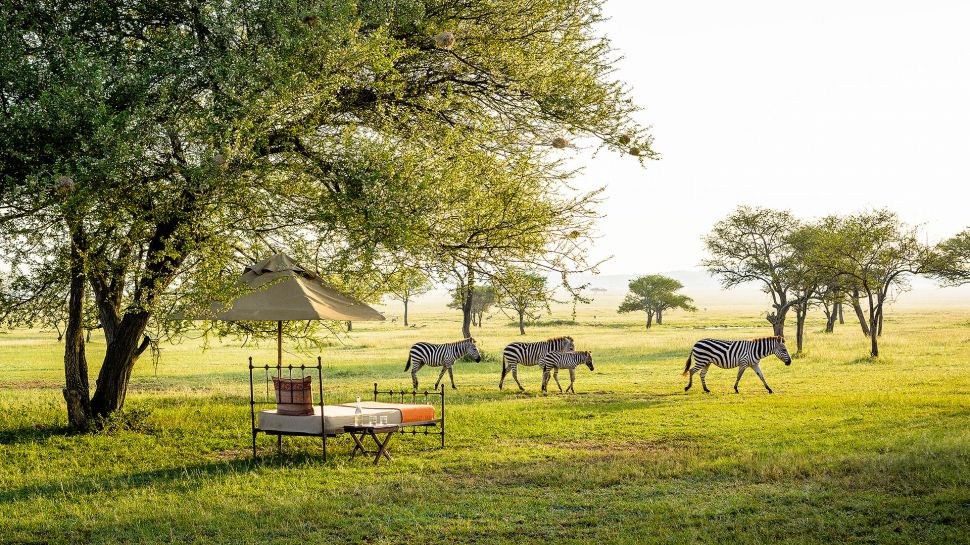Singita Grumeti Reserves, Sabora Tented Camp - Grumeti  Reserves, Tanzania