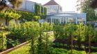 Hotel exterior gardens