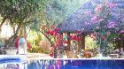 See more information about Hacienda de San Rafael Hacienda de San Rafael garden