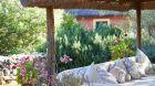 Hacienda de San Rafael garden
