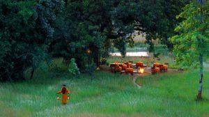 Mahua Kothi — Bandhavgarh National Park, India