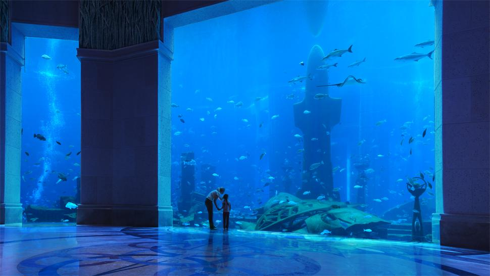 Atlantis The Palm Dubai Dubai United Arab Emirates