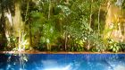 leafy outdoor pool