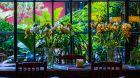 dining table at Jardin Escondido