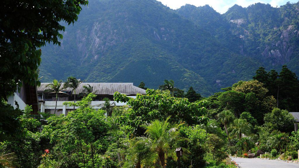 Resort Aerial Shot