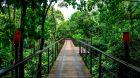 Walkway Nayara Springs