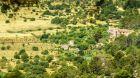 Castell Son Claret Bird Eye View